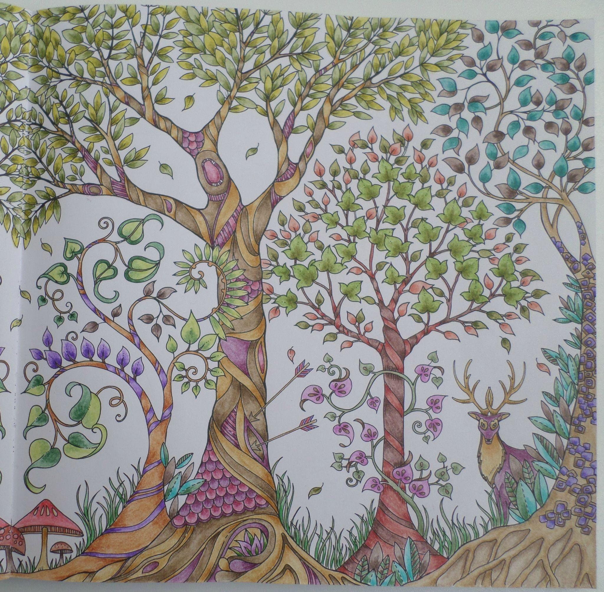 107530300_O (2048×2005) | Coloriage Forêt, Dessin Foret pour Dessin De Foret
