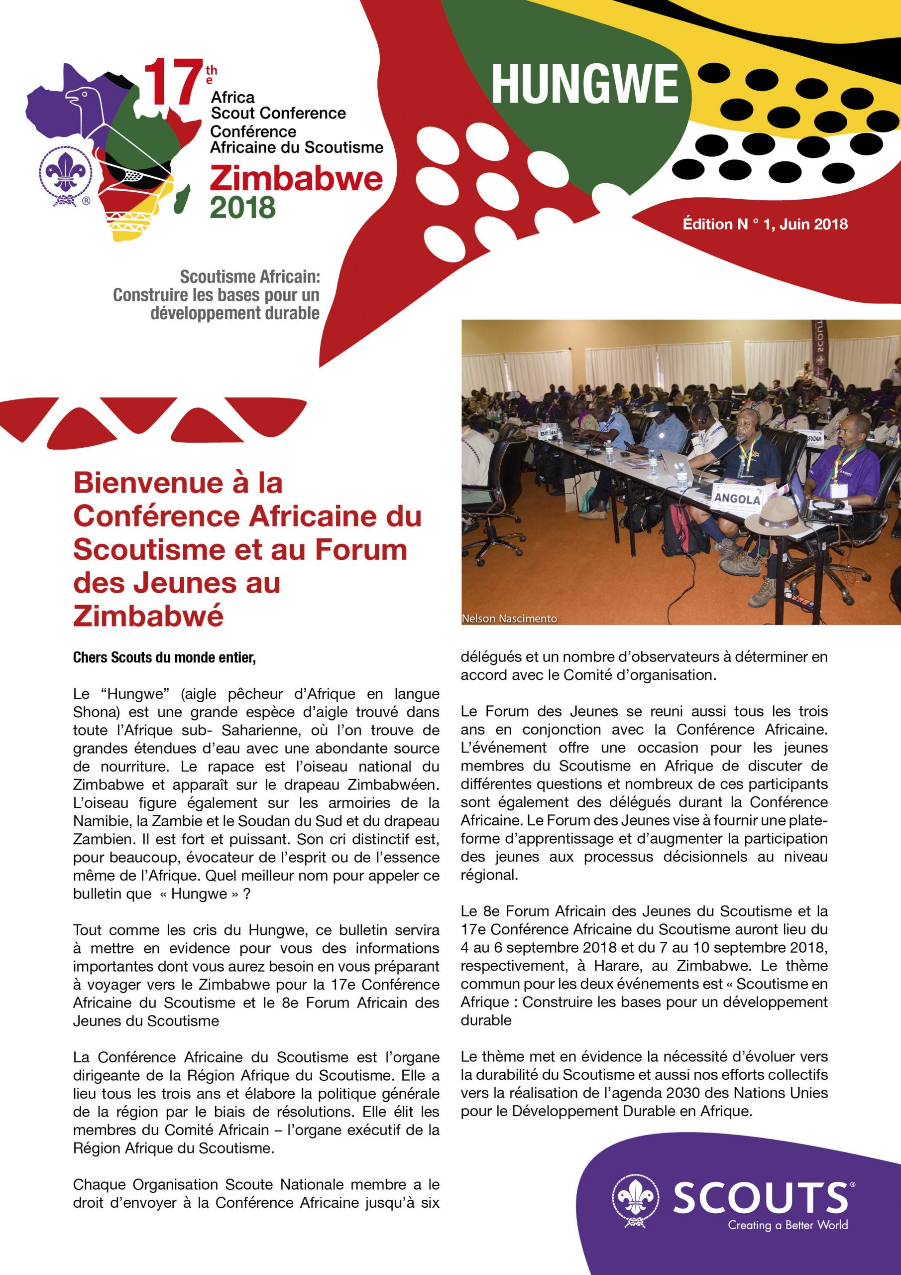 1St Bulletin Of The 17Th Africa Scout Conference And 8Th avec Nombre De Region