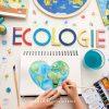 Activités Écologie En Maternelle + Fiches D'activités À à Activite Pour Maternelle Imprimer