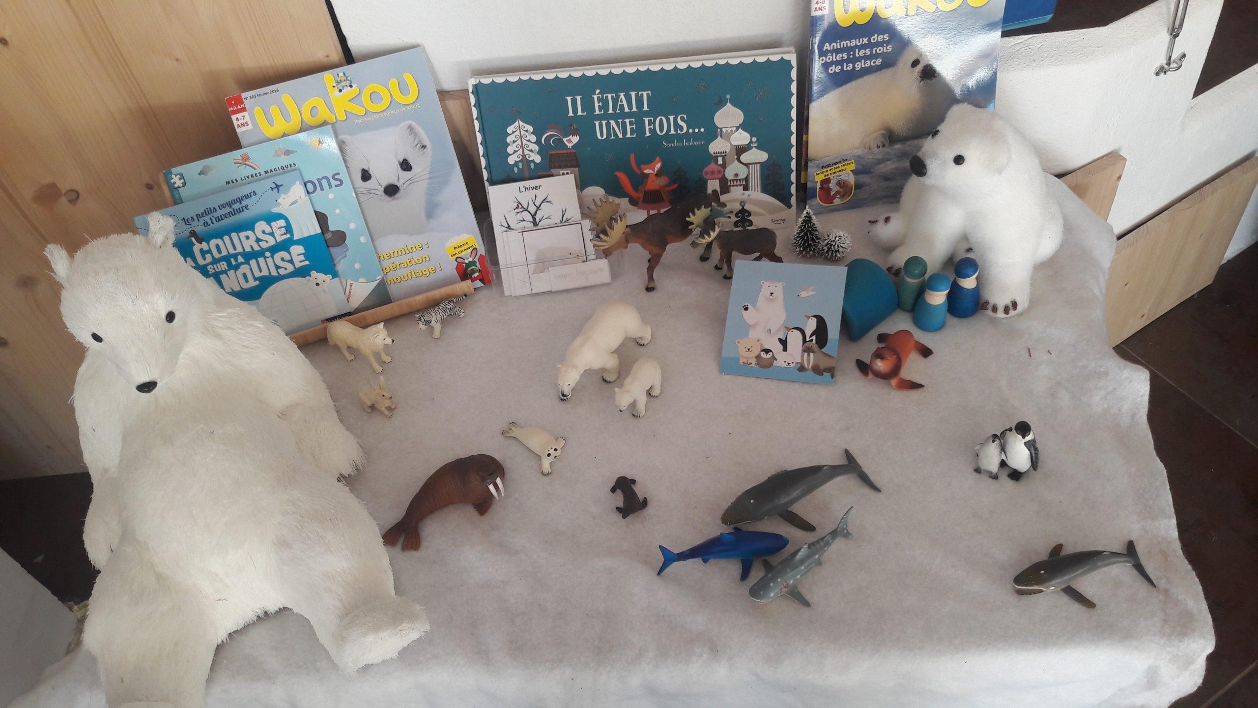 Activités Montessori Sur L'hiver, Le Pôle Nord Et Le Pôle à Activité Montessori 3 Ans