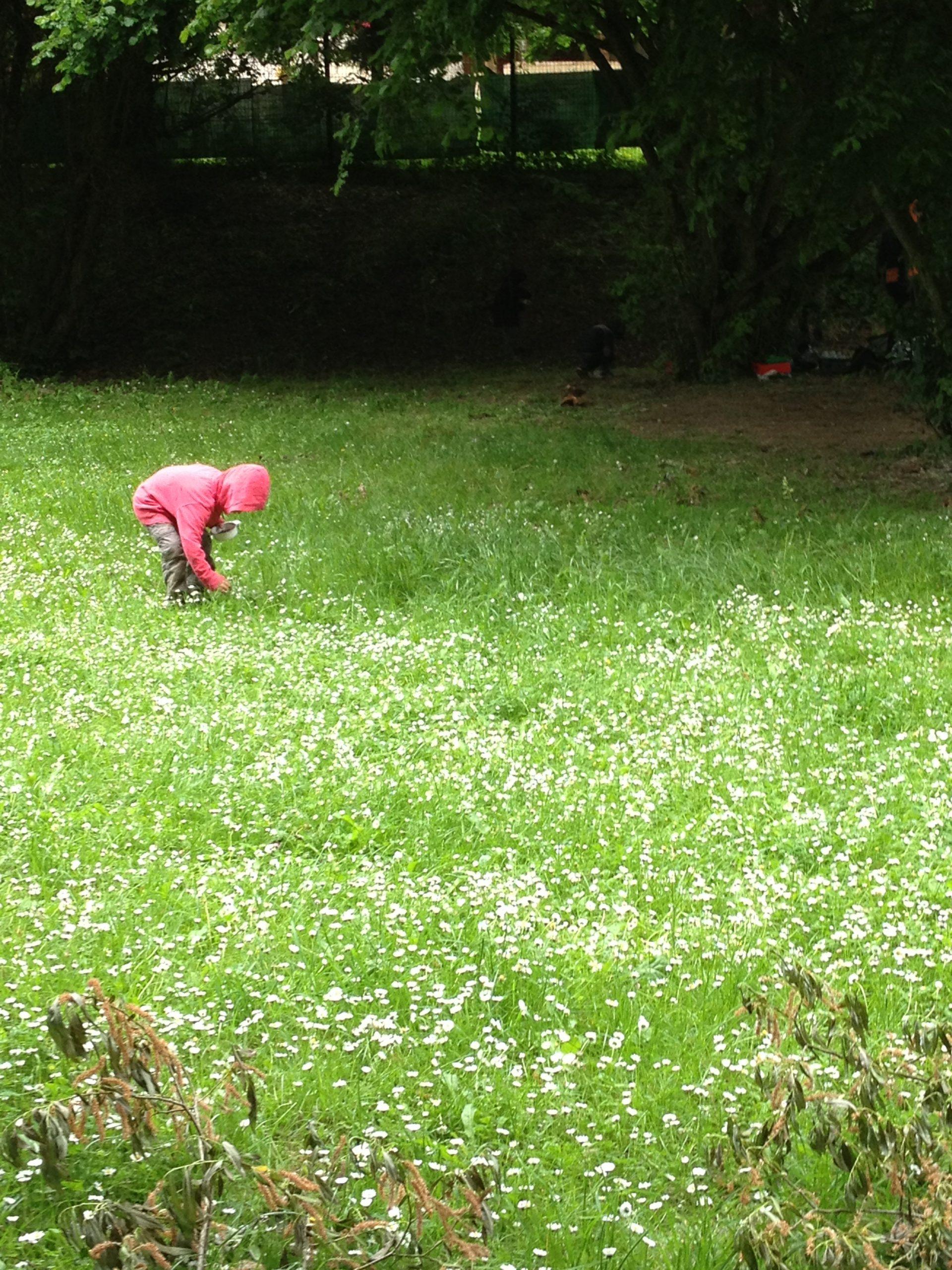 Activités « Nature » Autour Des 5 Sens – Ecole Marie-Thérèse concernant Les 5 Sens Activités Maternelle