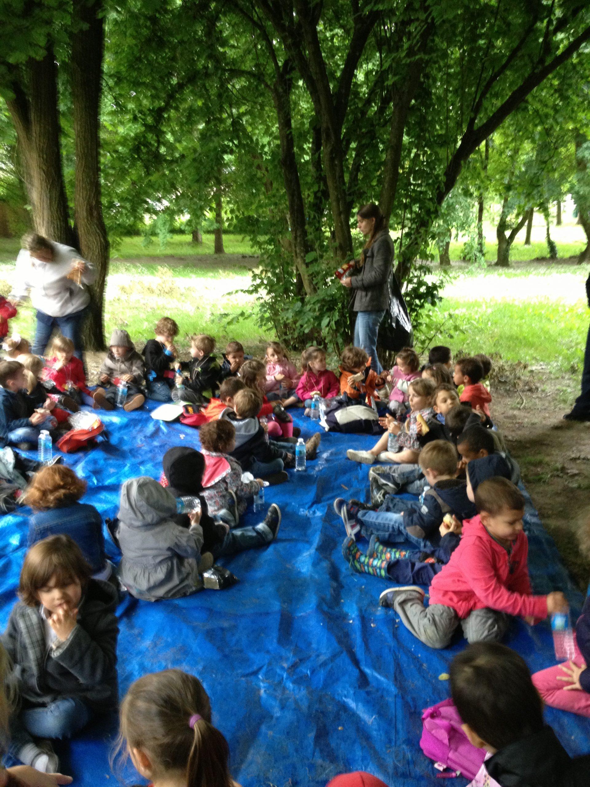 Activités « Nature » Autour Des 5 Sens – Ecole Marie-Thérèse destiné Les 5 Sens Activités Maternelle