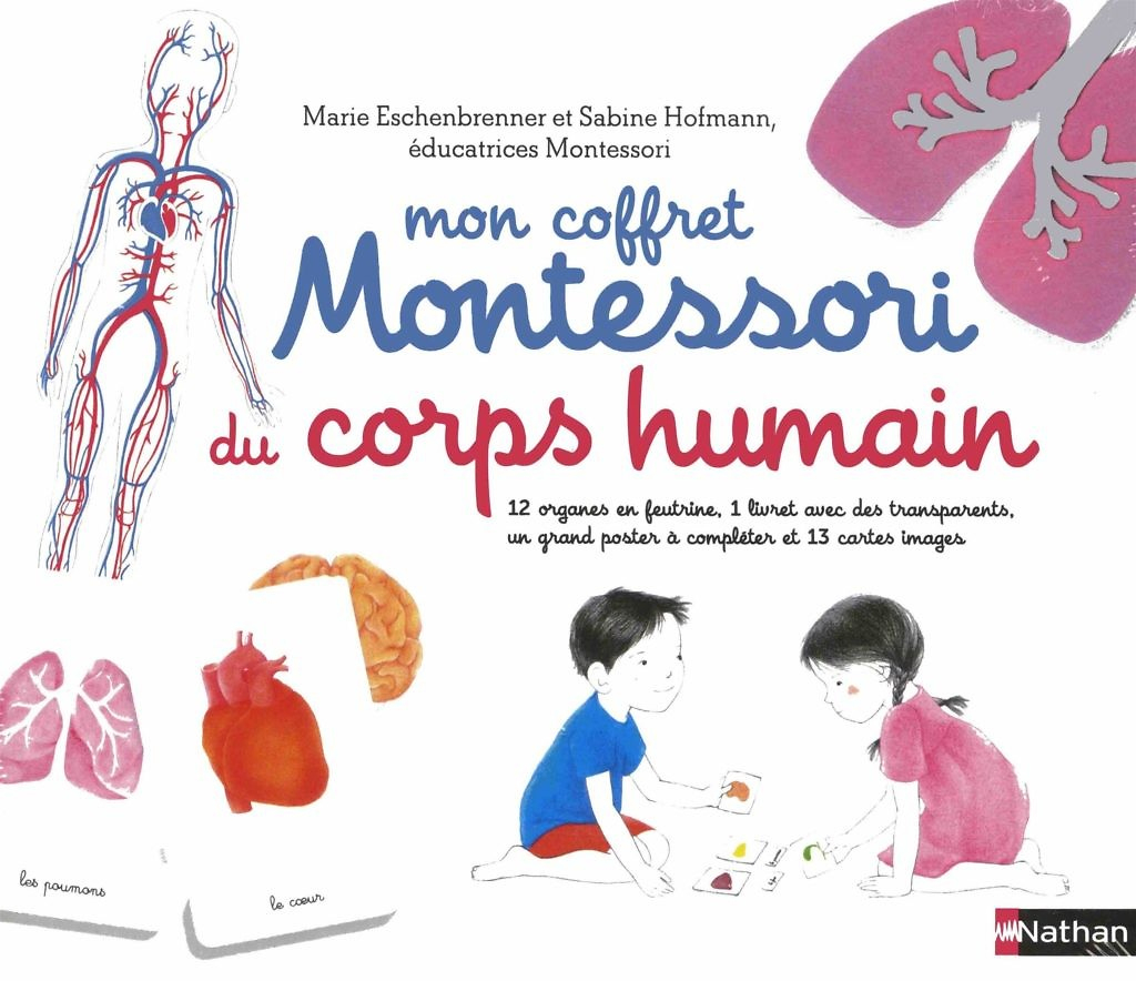 Activités Sur Le Corps Humain En Maternelle : Nos Ressources destiné Le Corps Humain En Maternelle