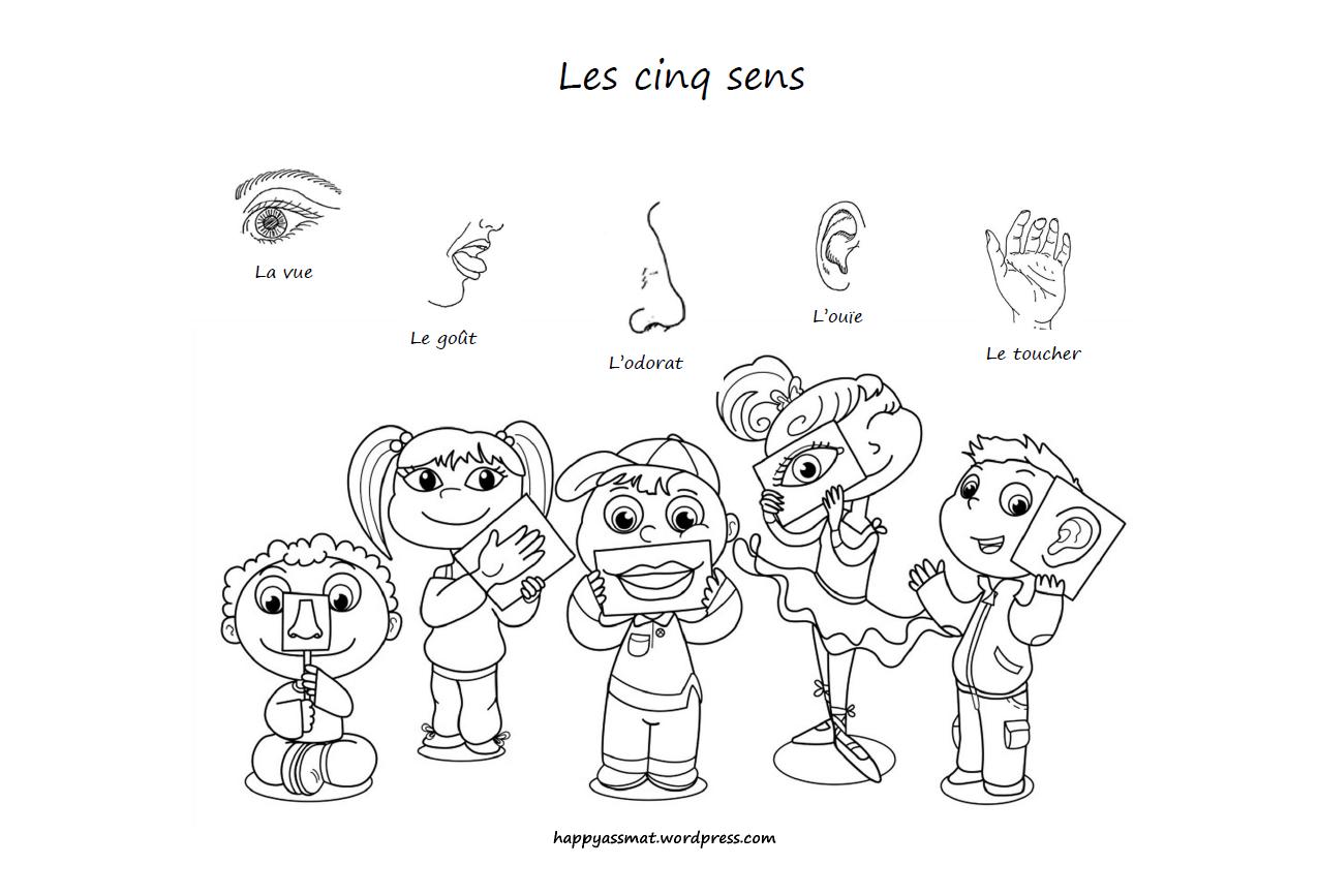 Activités Sur Le Thème Des 5 Sens – Happy Assmat dedans Les 5 Sens Activités Maternelle