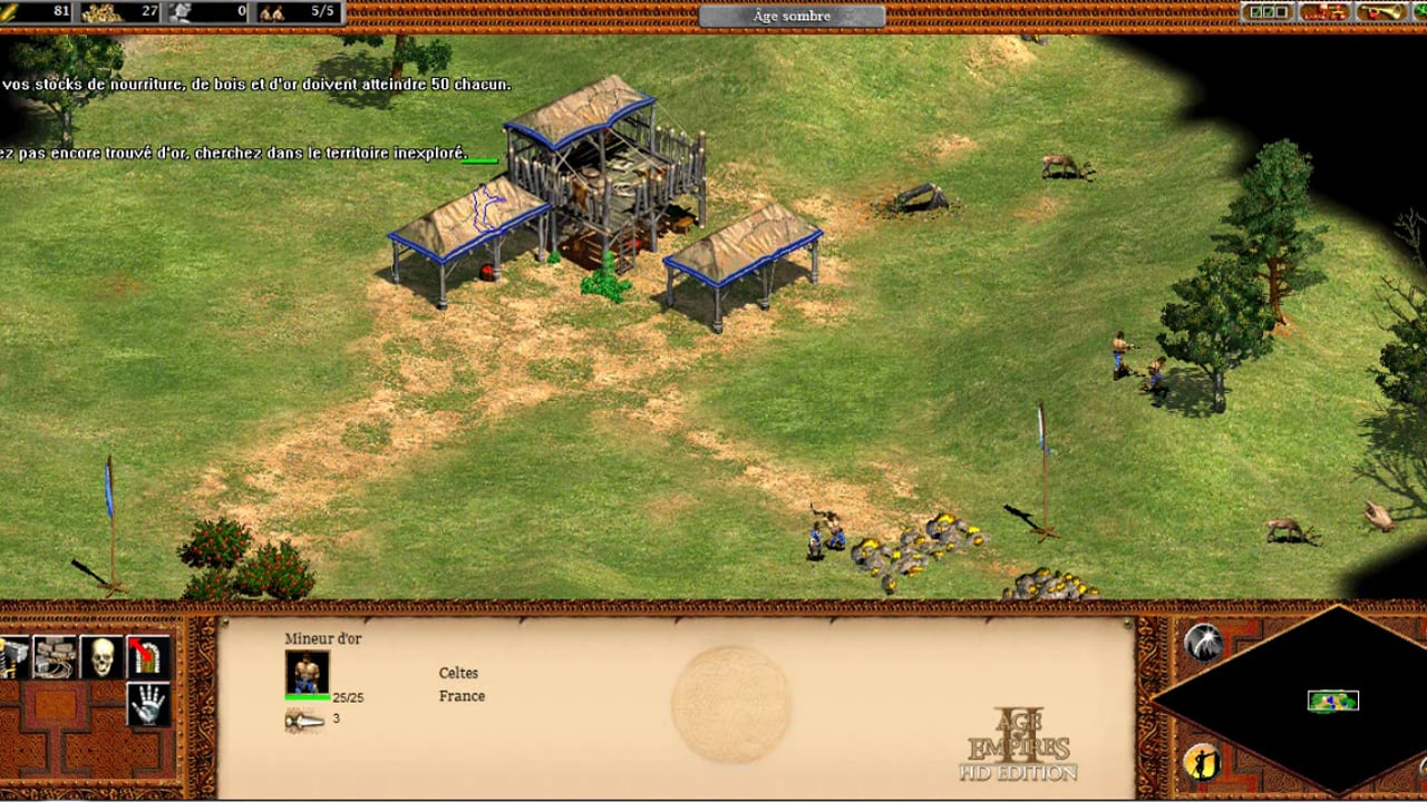 Age Of Empire - Nourir Les Armées intérieur Mineur D Or