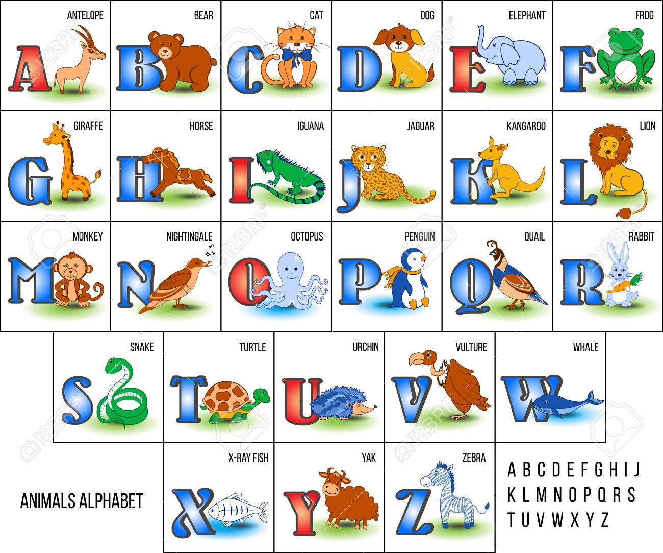 Alphabet De Zoo Mignon Avec Des Animaux De Bande Dessinée De L'illustration  Vectorielle De A À Z Isolé Sur Le Fond, Éducation Pour Enfants, à Apprendre Alphabet Francais