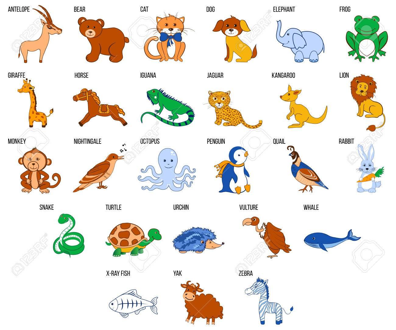 Alphabet De Zoo Mignon Avec Des Animaux De Bande Dessinée De L'illustration  Vectorielle De A À Z Isolé Sur Le Fond, Éducation Pour Enfants, destiné Apprendre Le Nom Des Animaux