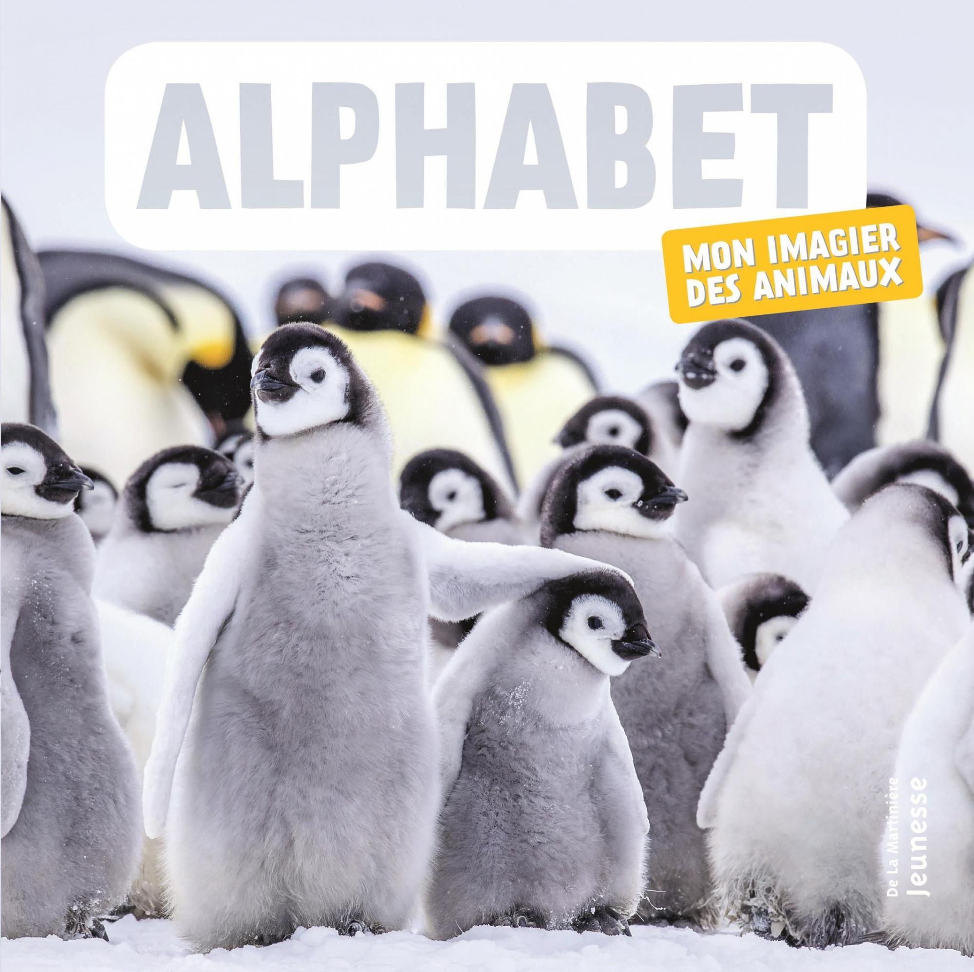Alphabet : Mon Imagier Des Animaux destiné Imagier Bébé En Ligne