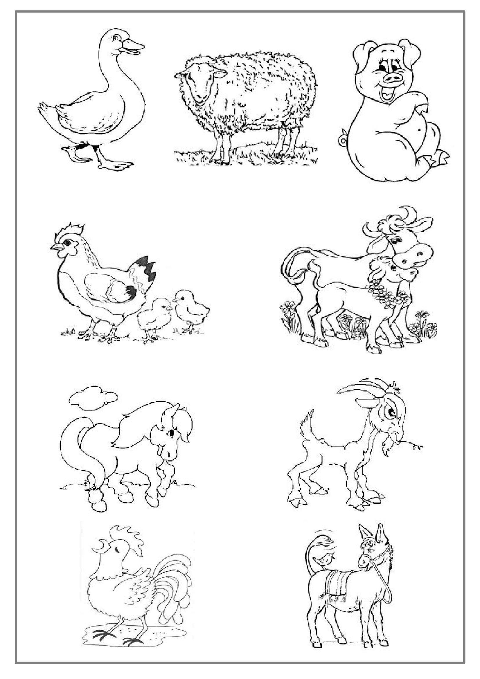 Animaux De La Ferme #31 (Animaux) – Coloriages À Imprimer serapportantà Dessin Animaux De La Ferme À Imprimer