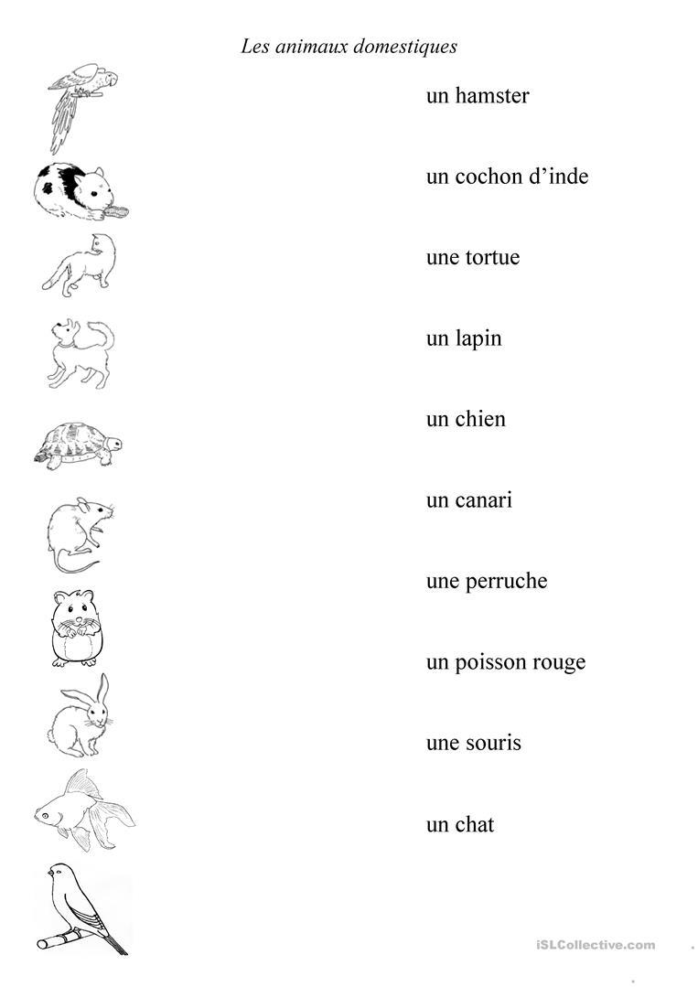 Animaux Domestiques - Français Fle Fiches Pedagogiques destiné Les Animaux Domestiques En Maternelle