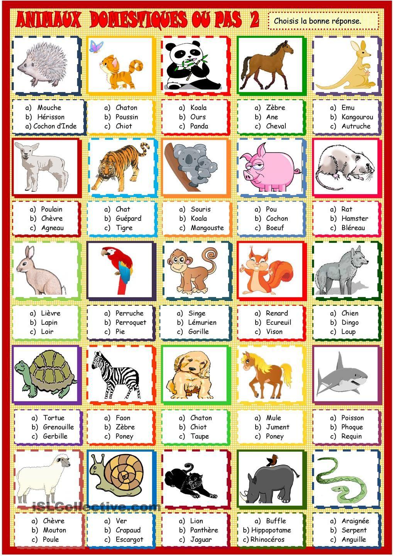 Animaux: Quiz2 | Animaux, Pédagogie Positive Et Nom Animaux serapportantà Apprendre Le Nom Des Animaux