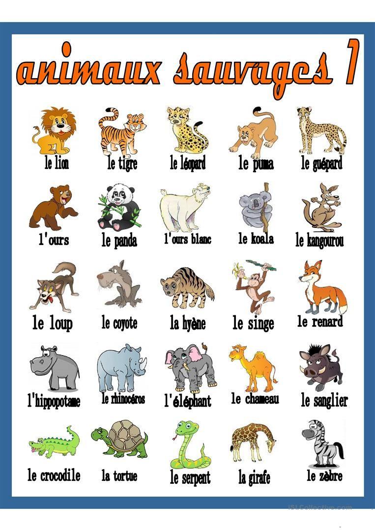 Animaux Sauvages 1 - Dictionnaire Visuel | Imagier Animaux avec Les Animaux Domestiques En Maternelle