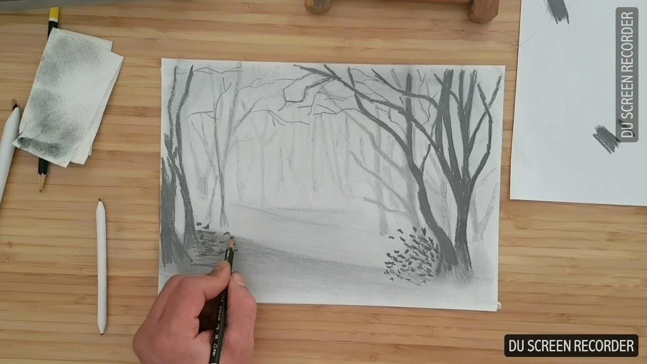 Apprendre À Dessiner La Forêt Dans Le Brouillard tout Dessin De Foret