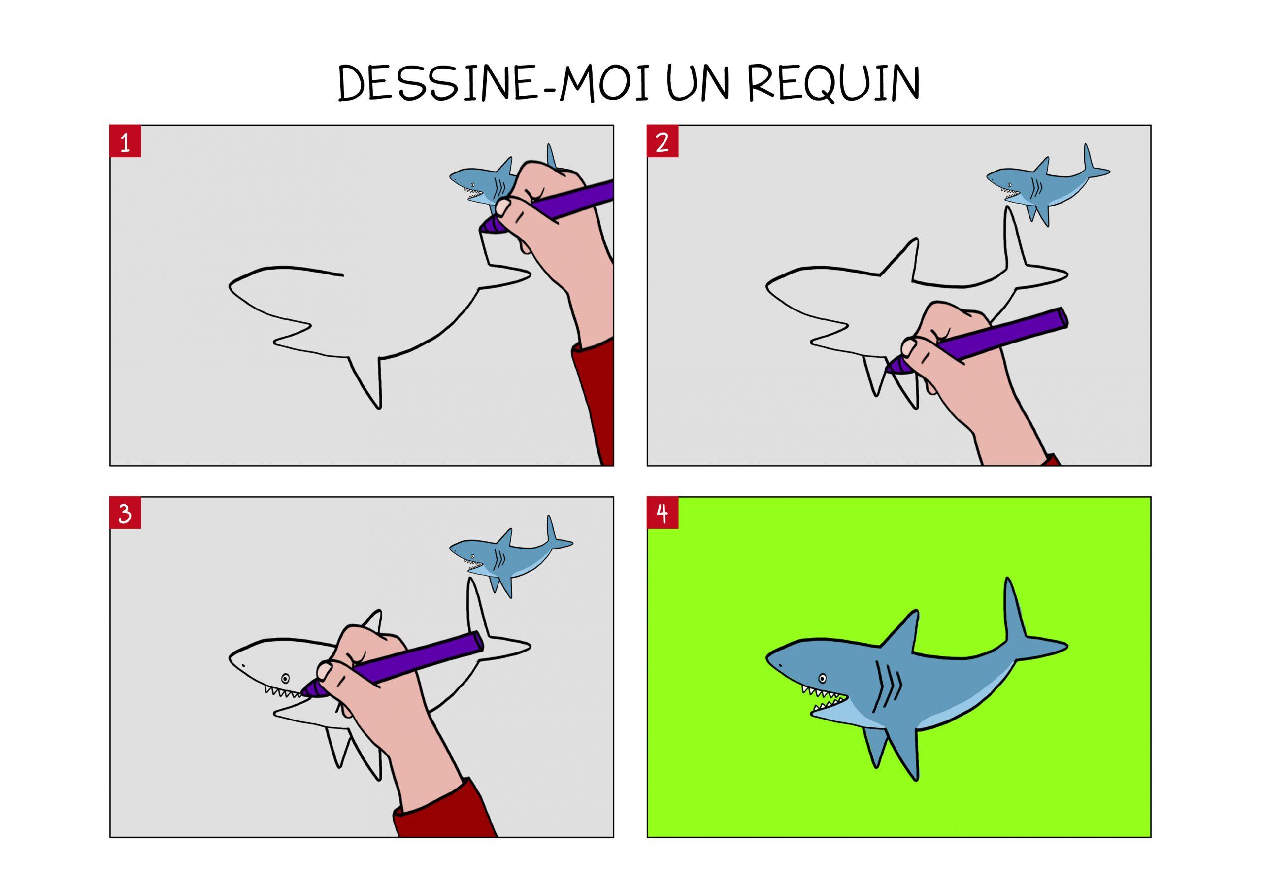 Apprendre À Dessiner Un Requin En 3 Étapes avec Coloriage Requin Blanc Imprimer