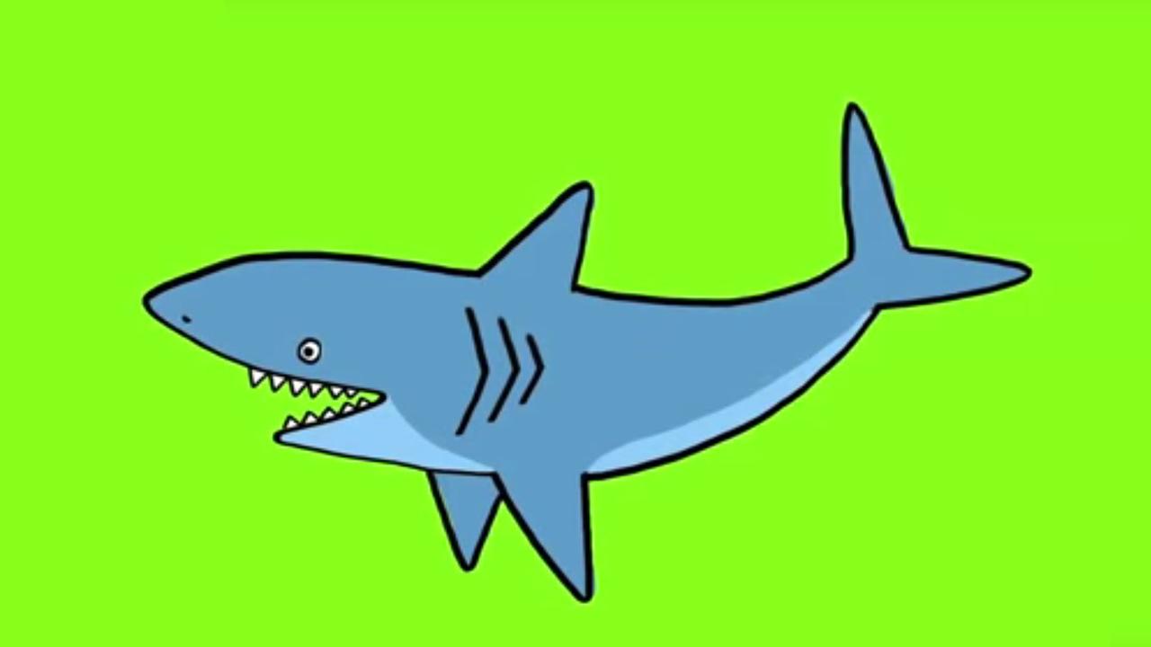 Apprendre À Dessiner Un Requin intérieur Coloriage Requin Blanc Imprimer