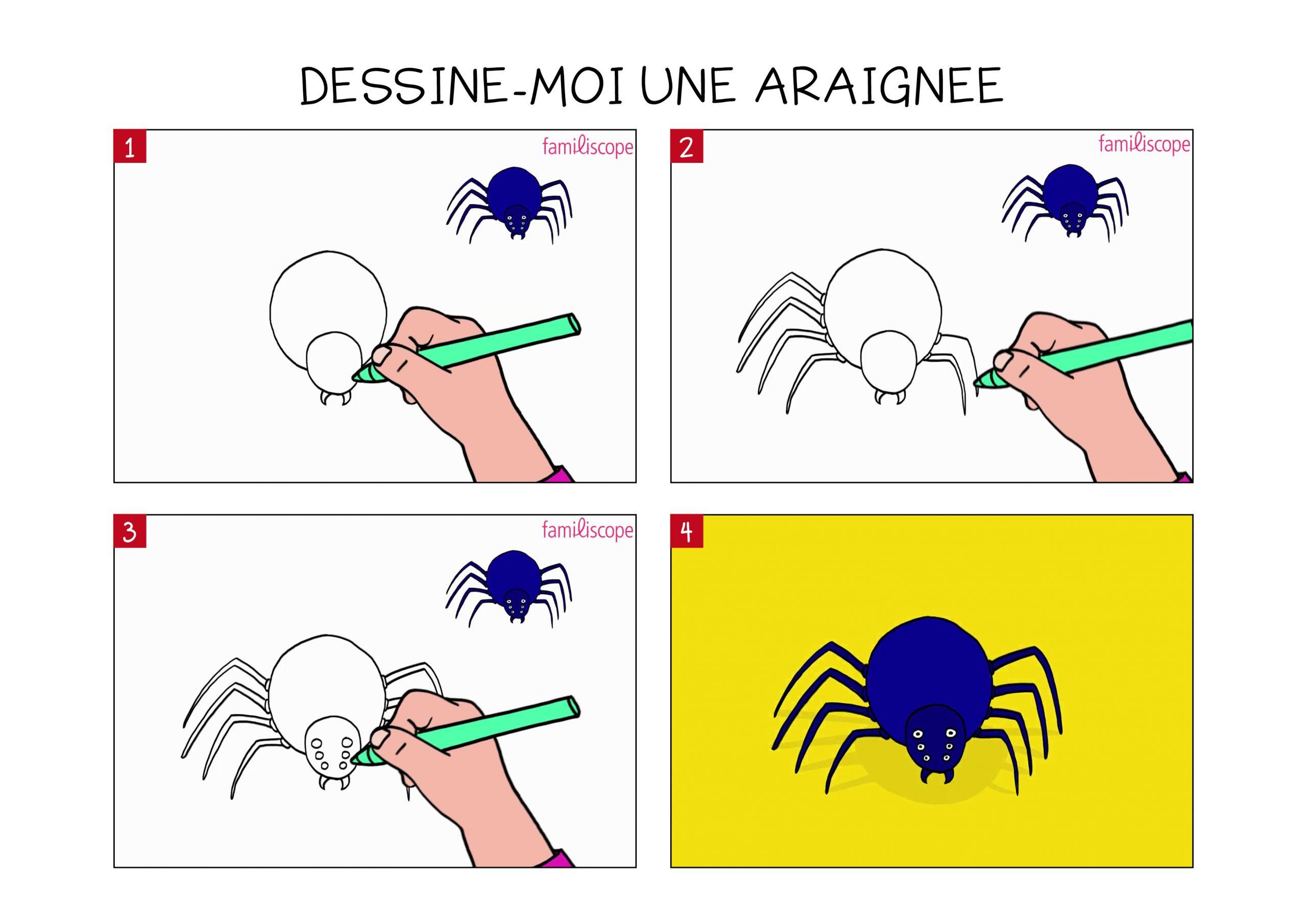 Apprendre À Dessiner Une Araignée En 3 Étapes dedans Dessiner Une Araignee