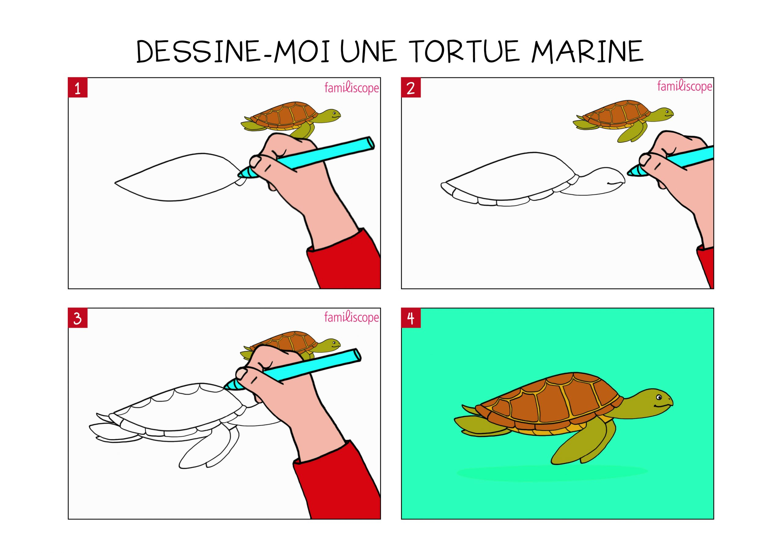 Apprendre À Dessiner Une Tortue Marine En 3 Étapes à Dessiner Une Tortue