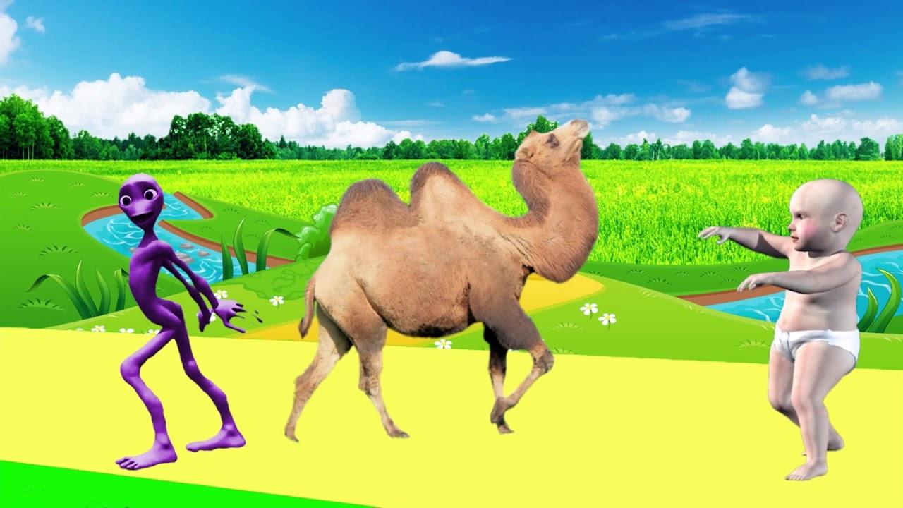 Apprendre Les Animaux Jeux Éducatifs - Apprendre Les Animaux Maternelle |  Mozi Tv dedans Apprendre Les Animaux Jeux Éducatifs
