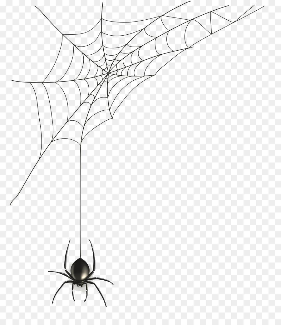 Araignée, Toile Daraignée, Dessin Png - Araignée, Toile dedans Dessin Toile Araignée