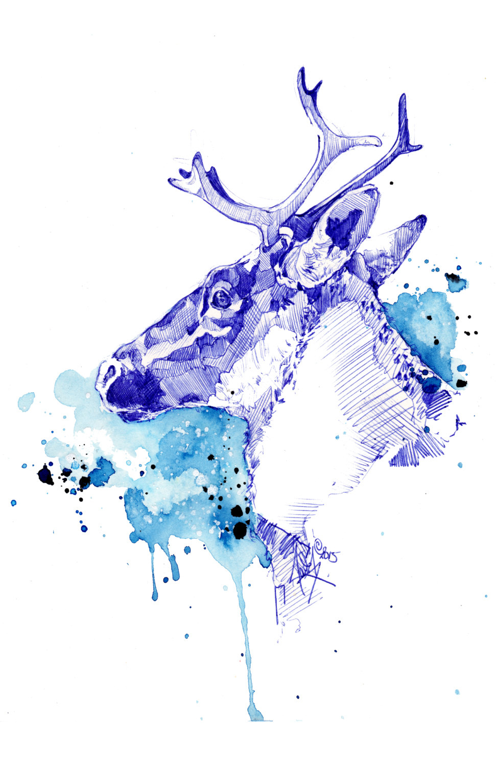 Bleu Boréal - Illustration (Print) | Caribou | Deer | Antler | Aquarelle |  Drawing | Dessin | Watercolor | Animal Illustration | Art Deco serapportantà Caribou Dessin