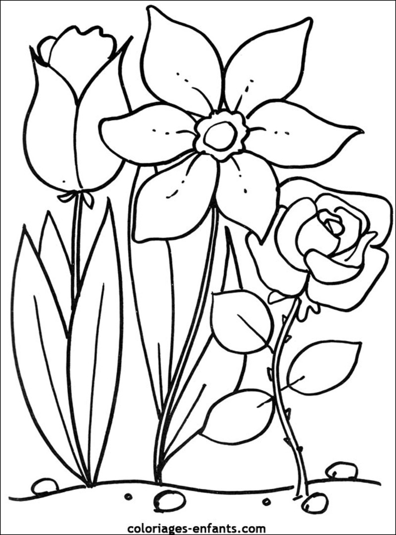 Bouquet De Fleurs #113 (Nature) – Coloriages À Imprimer dedans Dessin A Colorier De Fleur