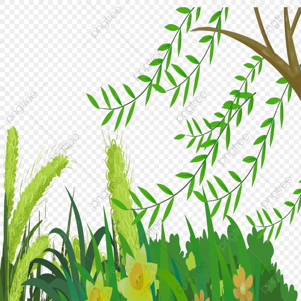 Branches Grand Arbre Dessin Animé Plante De Printemps Nature intérieur Dessin Printemps Paysage