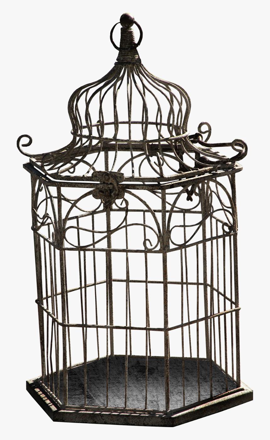 Cage D Oiseau Dessin, Hd Png Download - Kindpng concernant Dessin De Cage D Oiseau