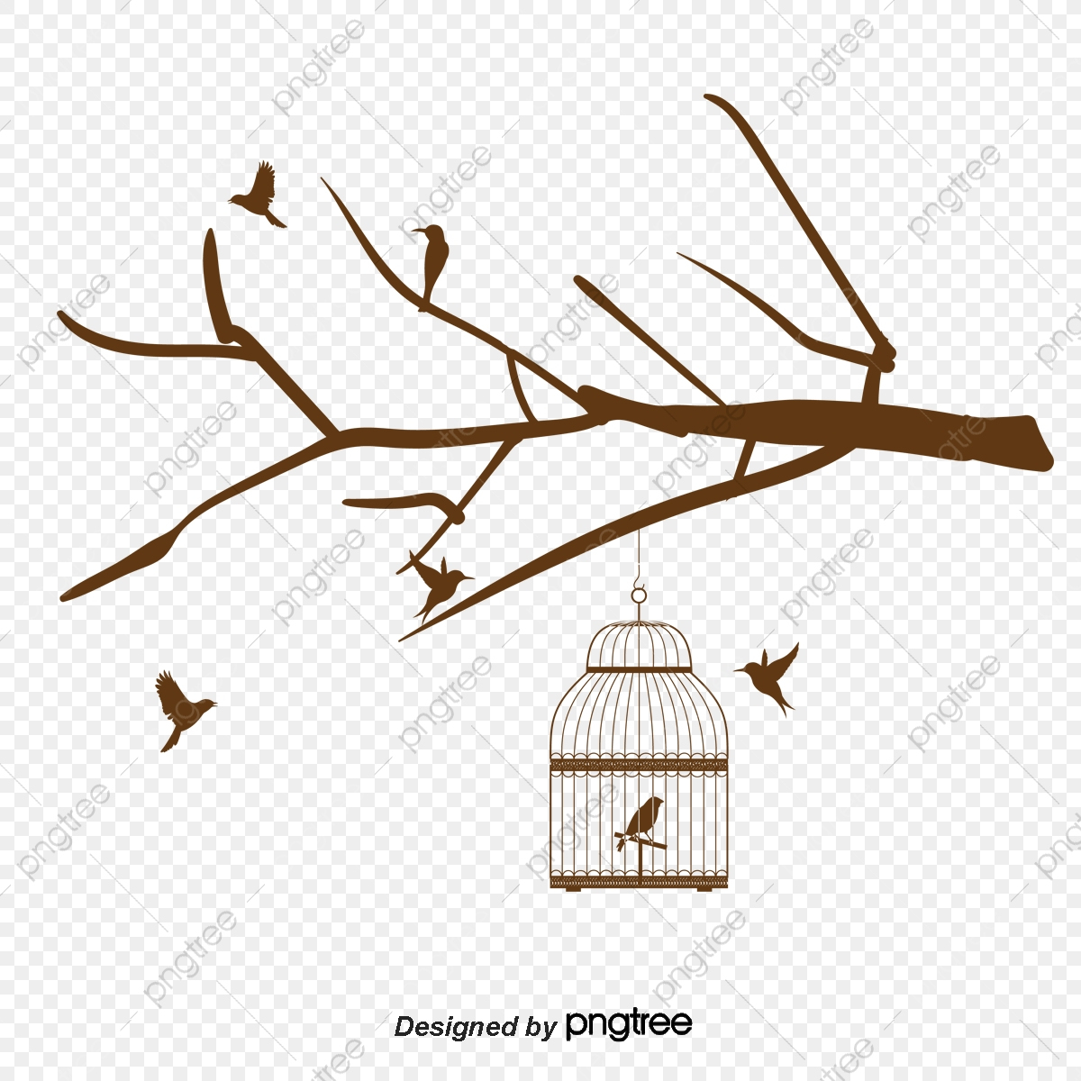 Cage D'oiseau, Un Graphe En Noir Et Blanc, Illustration destiné Dessin De Cage D Oiseau