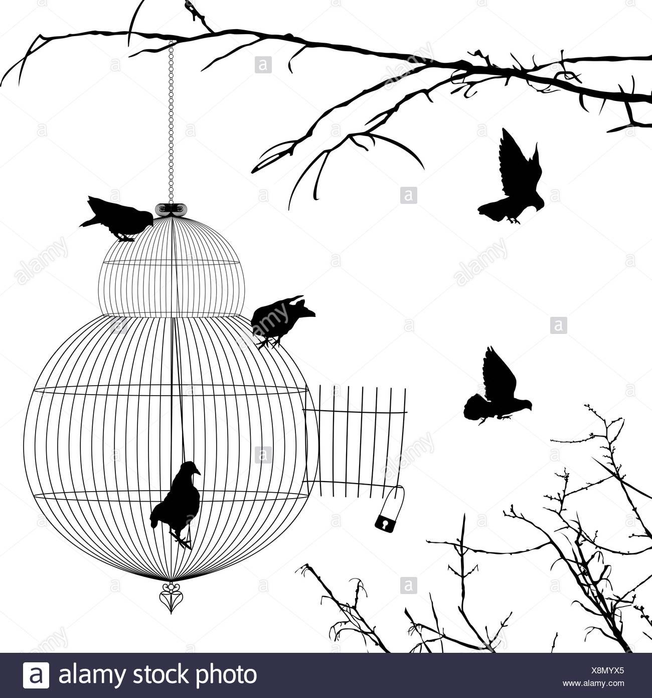 Cage Ouverte Et Silhouettes D'oiseaux Banque D'images, Photo tout Dessin De Cage D Oiseau