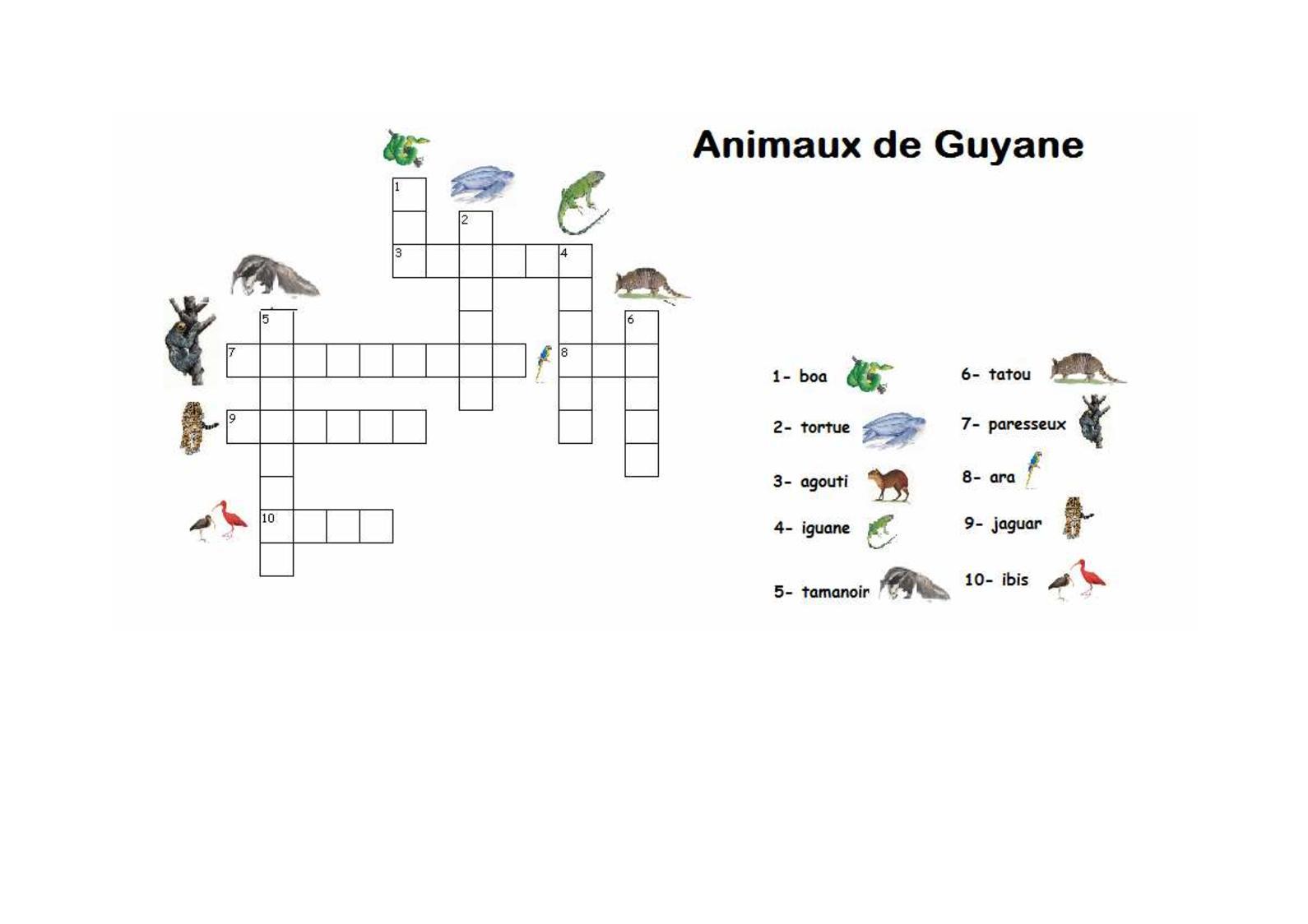 Calaméo - Mots Croisés Animaux De Guyane avec Mot Croiser