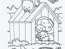 Carte Anniversaire Fille 4 Ans Unique Download 21 Jeux pour Jeux Gratuit Garçon 4 Ans