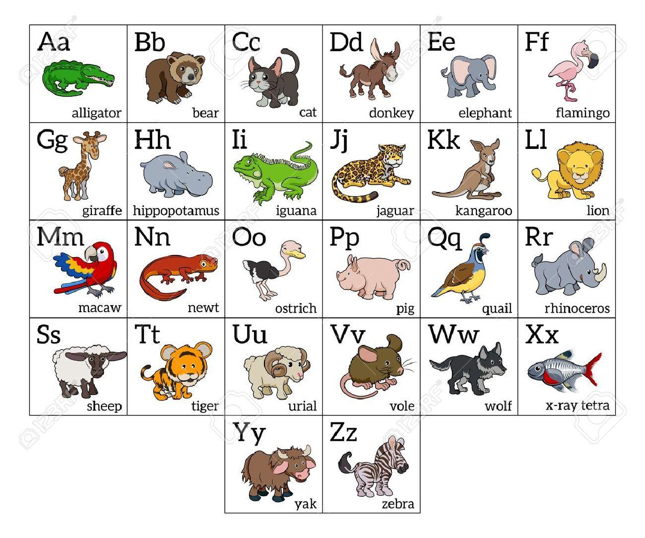 Cartoon Alphabet Animal Apprendre Graphique Avec Une Illustration Des  Animaux De Dessin Animé Pour Chaque Lettre Et Les Majuscules Et Les  Minuscules à Apprendre Alphabet Francais