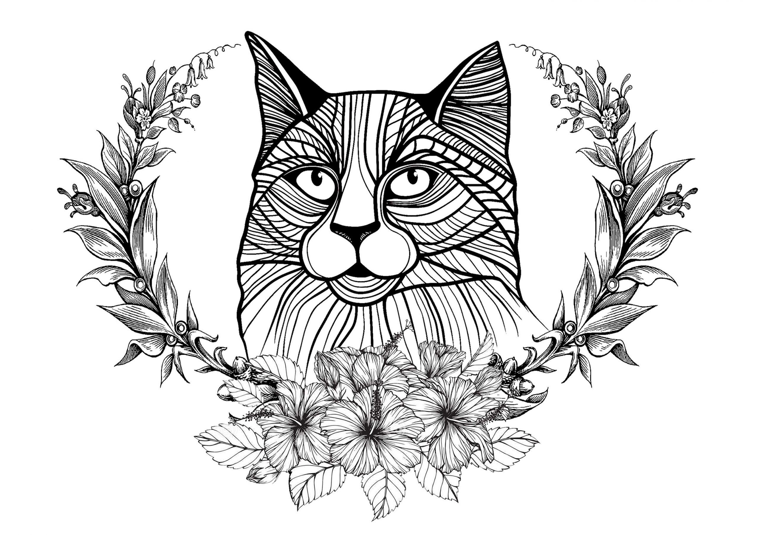 Chat Et Couronne De Laurier - Chats - Coloriages Difficiles pour Coloriage De Chat De Noel