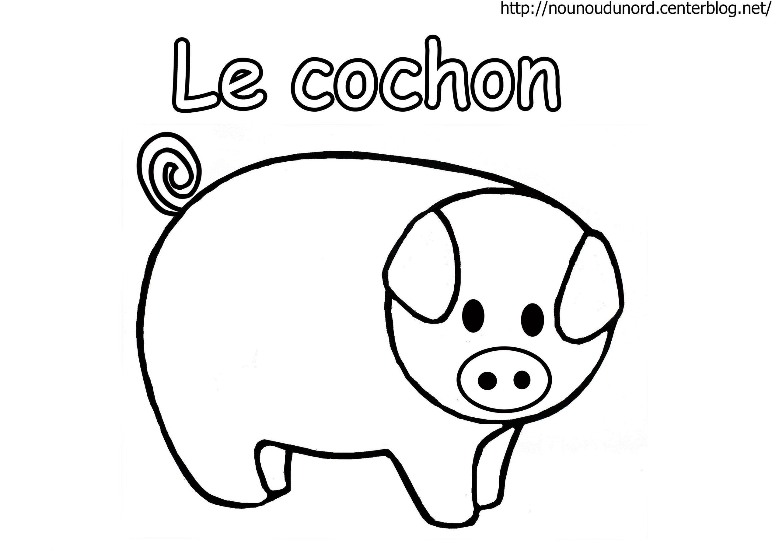 Cochon En Coloriage, À Gommettes, En Couleur à Dessin A Colorier Cochon