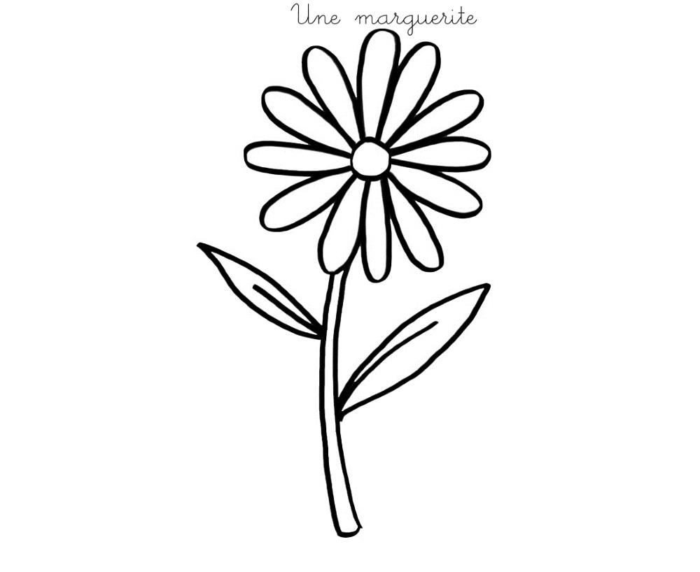 Coloriage À Imprimer : Une Marguerite concernant Dessin A Decouper Et A Imprimer