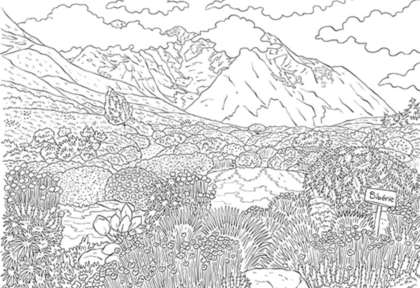 Coloriage À Télécharger: Le Jardin Botanique Du Col Du Lautaret tout Tous Les Coloriages Du Monde