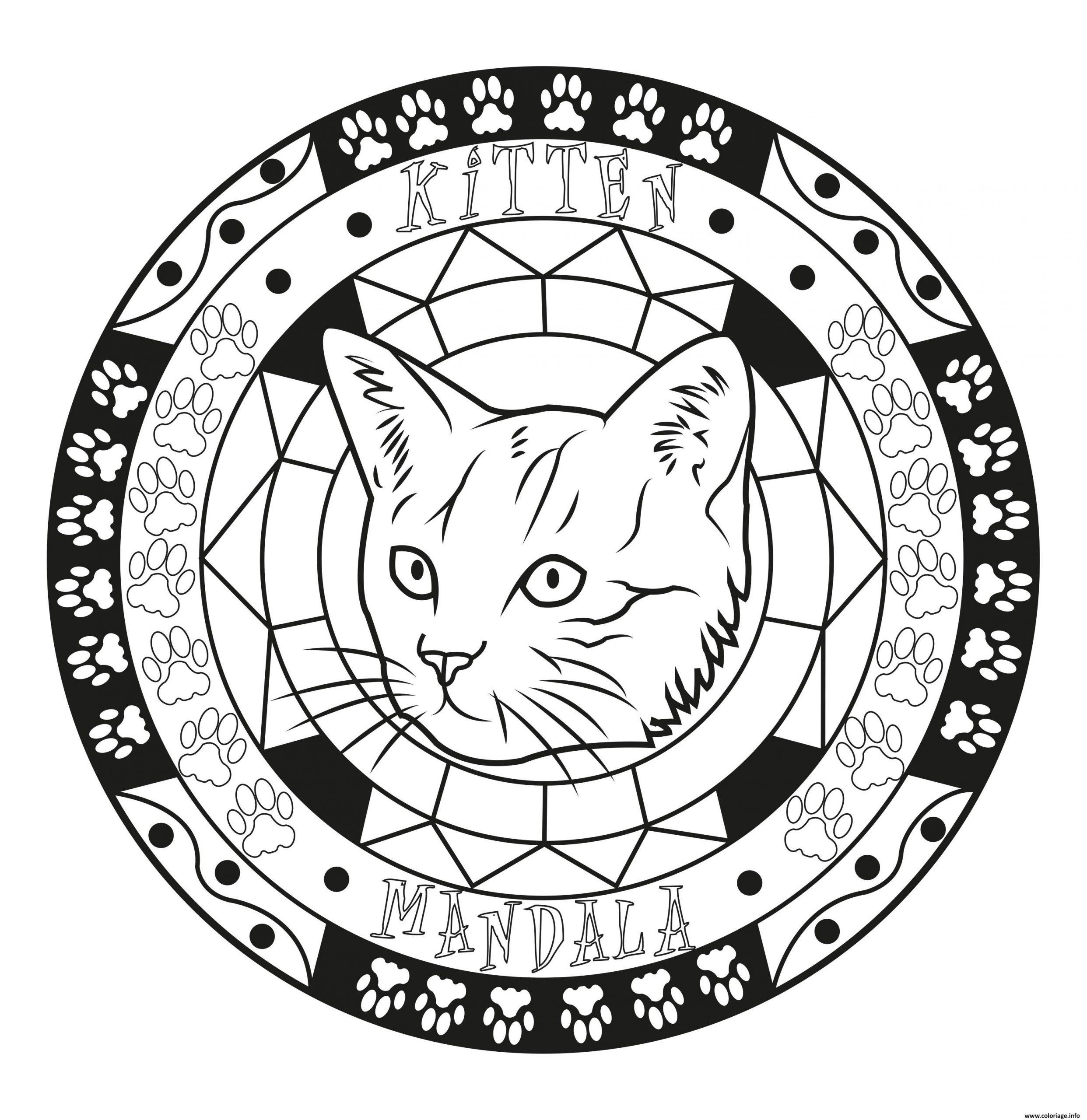 Coloriage Adulte Mandala Chat Chaton Original Facile Dessin encequiconcerne Mandala À Imprimer Facile