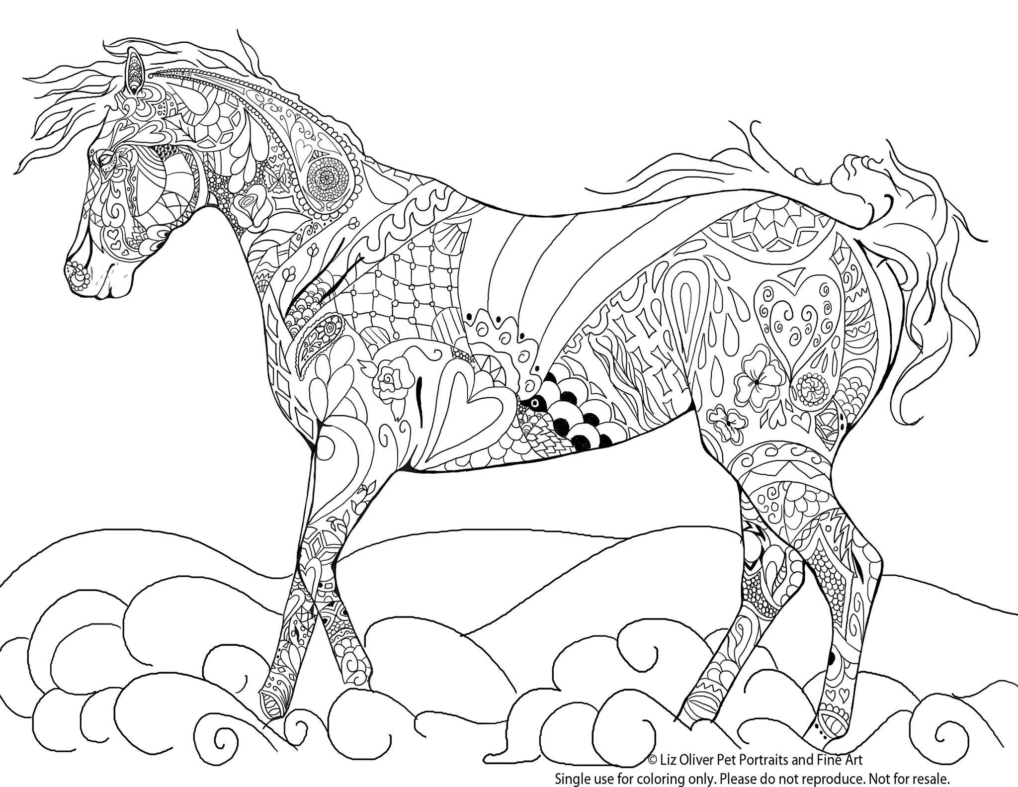 Coloriage Animaux A Colorier Sur L'ordinateur Contemporain serapportantà Image De Cheval A Colorier