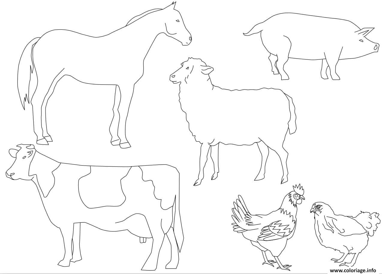 Coloriage Animaux De La Ferme Vache Cheval Mouton Cochon destiné Photo De Mouton A Imprimer