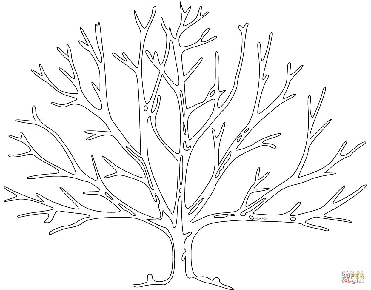 Coloriage - Arbre Sans Feuillage | Coloriages À Imprimer encequiconcerne Dessin De Feuille D Arbre À Imprimer