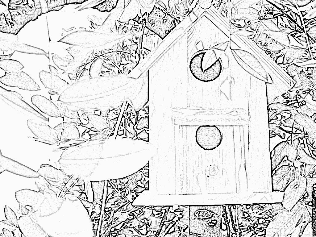 Coloriage Cage A Oiseau À Imprimer Pour Les Enfants - Dessin concernant Dessin De Cage D Oiseau
