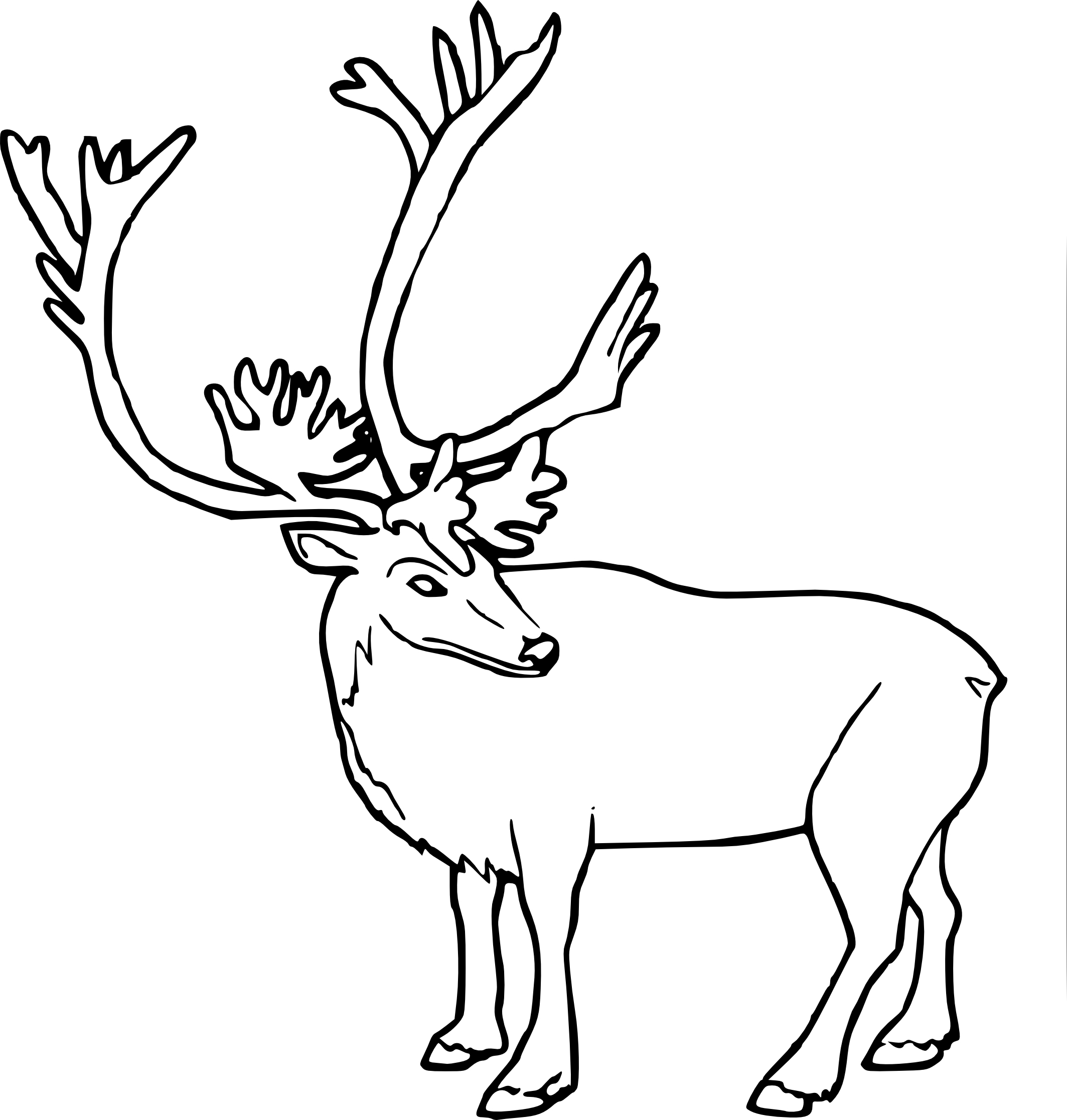 Coloriage Caribou Et Dessin À Imprimer concernant Caribou Dessin