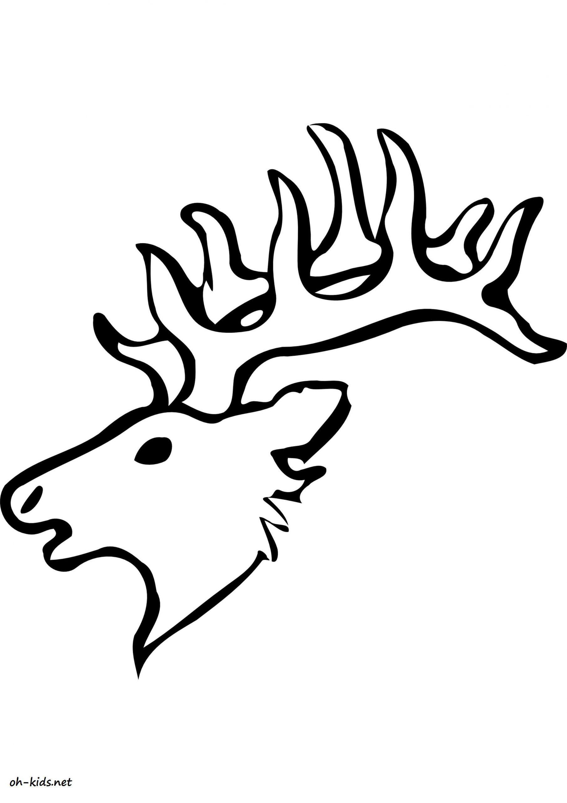 Coloriage Caribou - Oh Kids Fr serapportantà Caribou Dessin