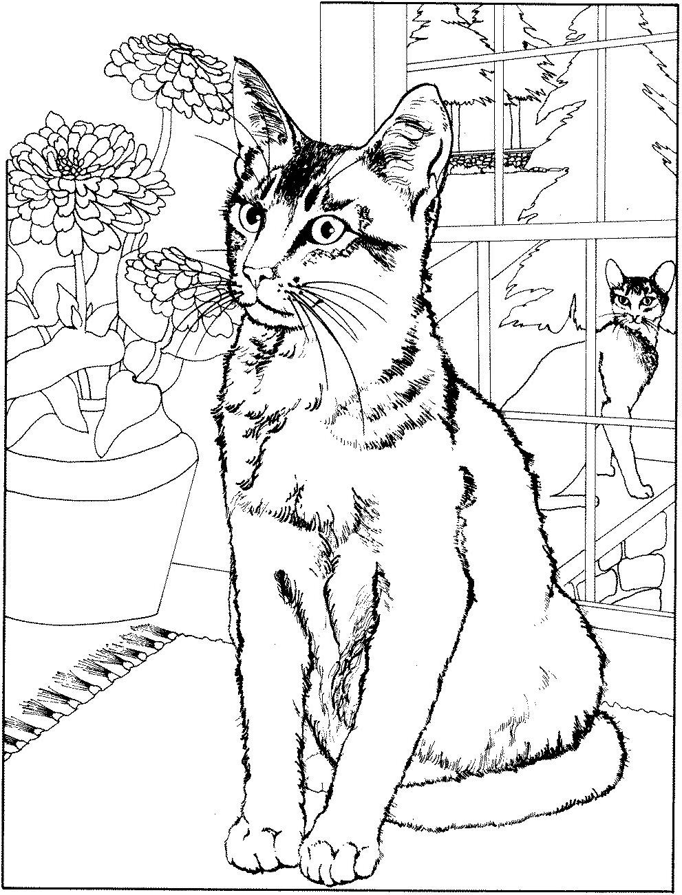 Coloriage Chat Gratuit A Imprimer - 1001 Animaux concernant Image A Colorier Gratuit A Imprimer