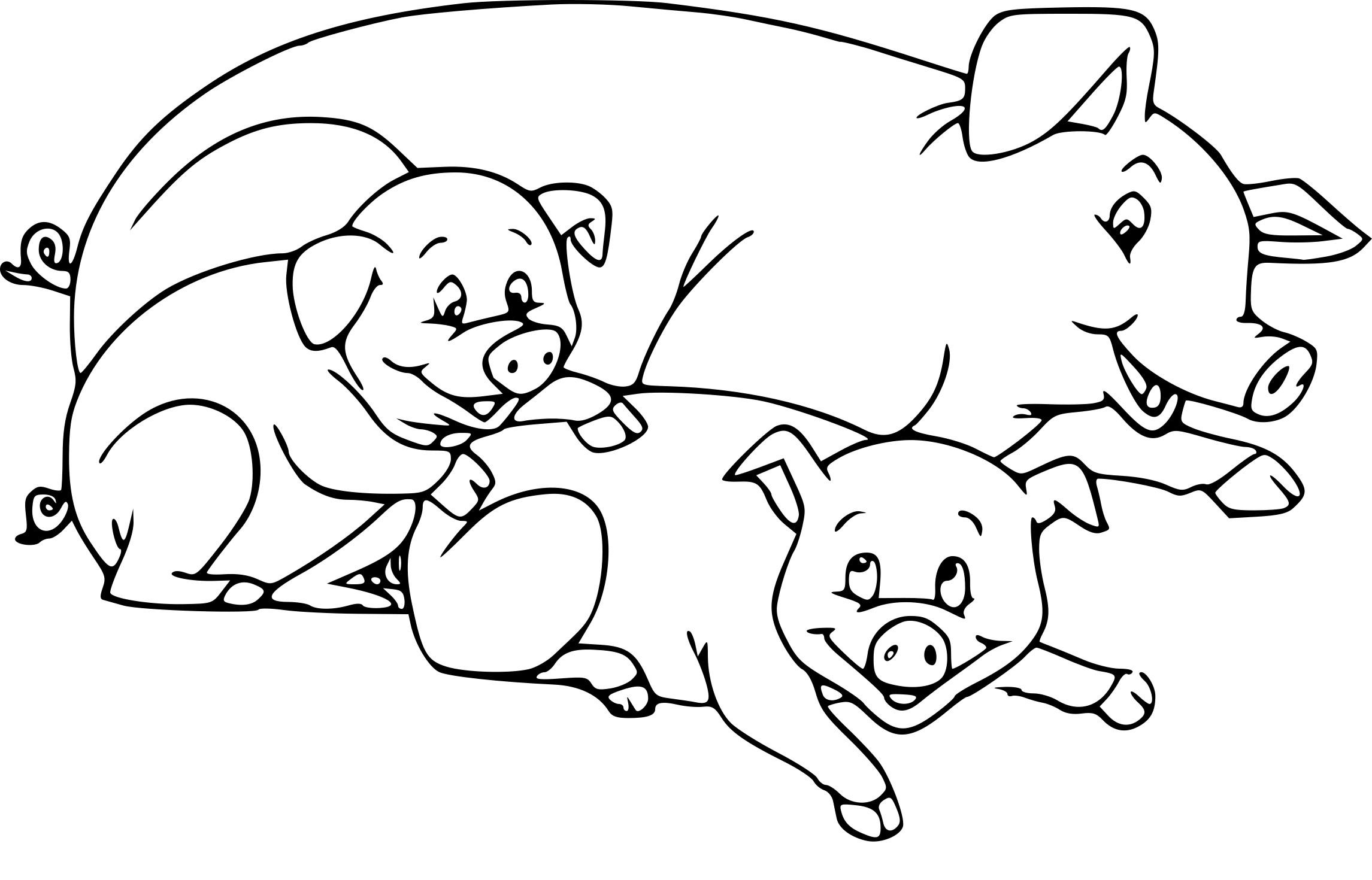Coloriage Cochon La Ferme À Imprimer Sur Coloriages avec Dessin A Colorier Cochon