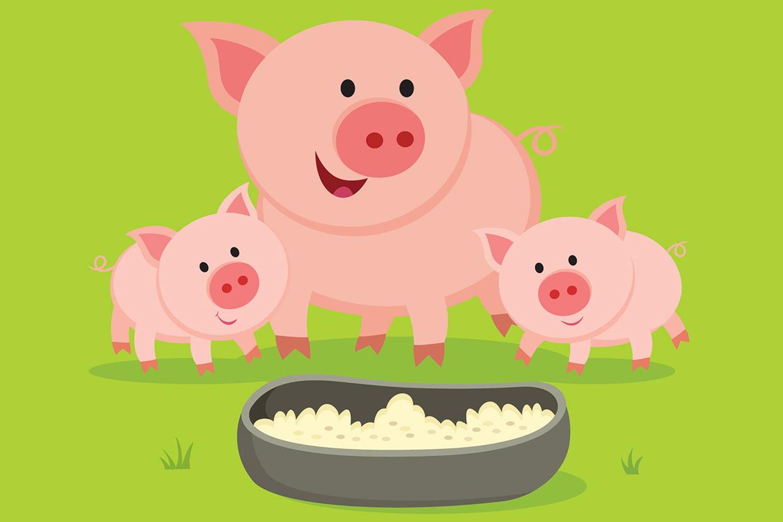 Coloriage Cochon Sur Hugolescargot tout Dessin Cochon A Colorier