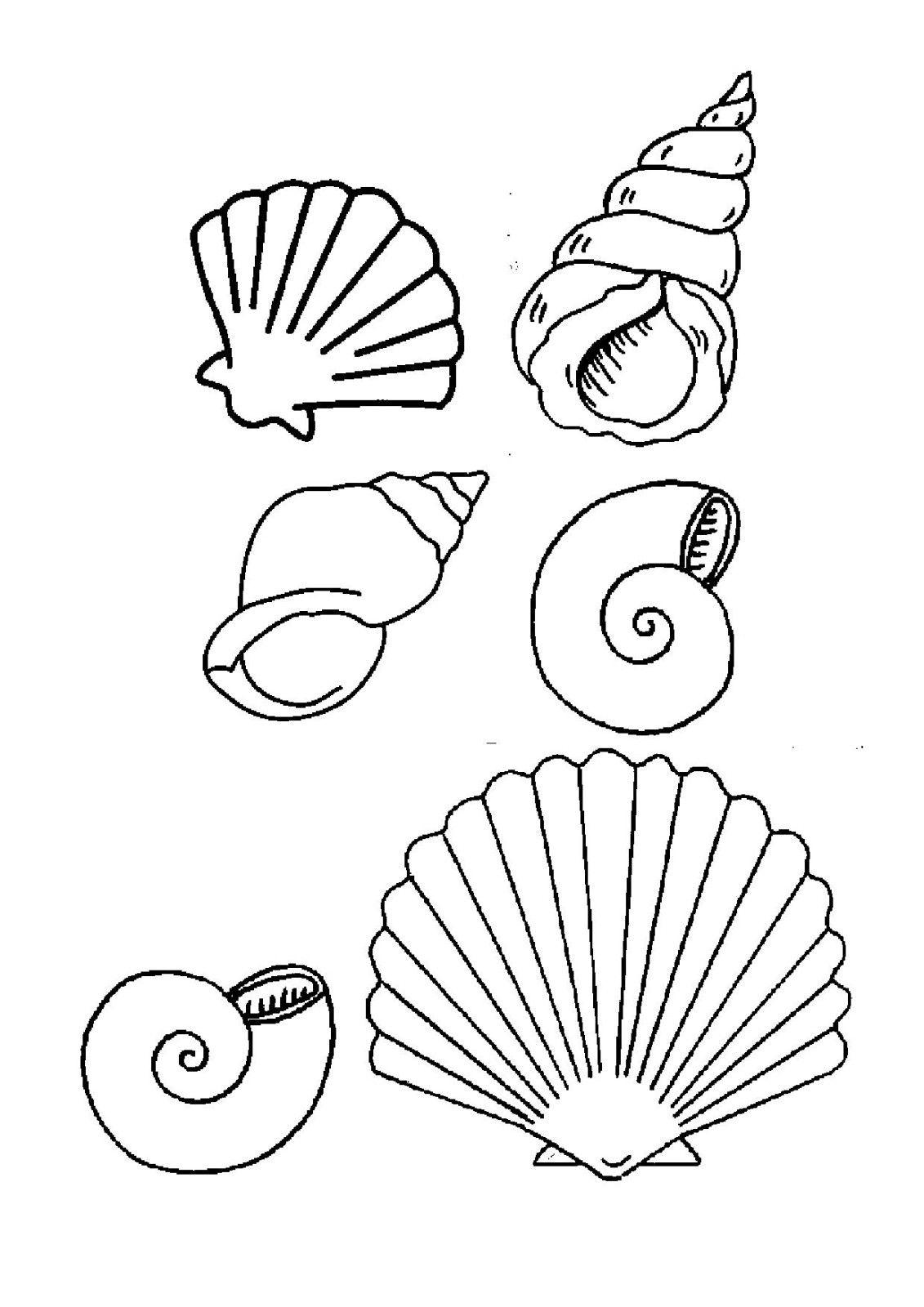 Coloriage Coquillage De Mer À Colorier - Dessin À Imprimer avec Coloriage Sur La Mer À Imprimer
