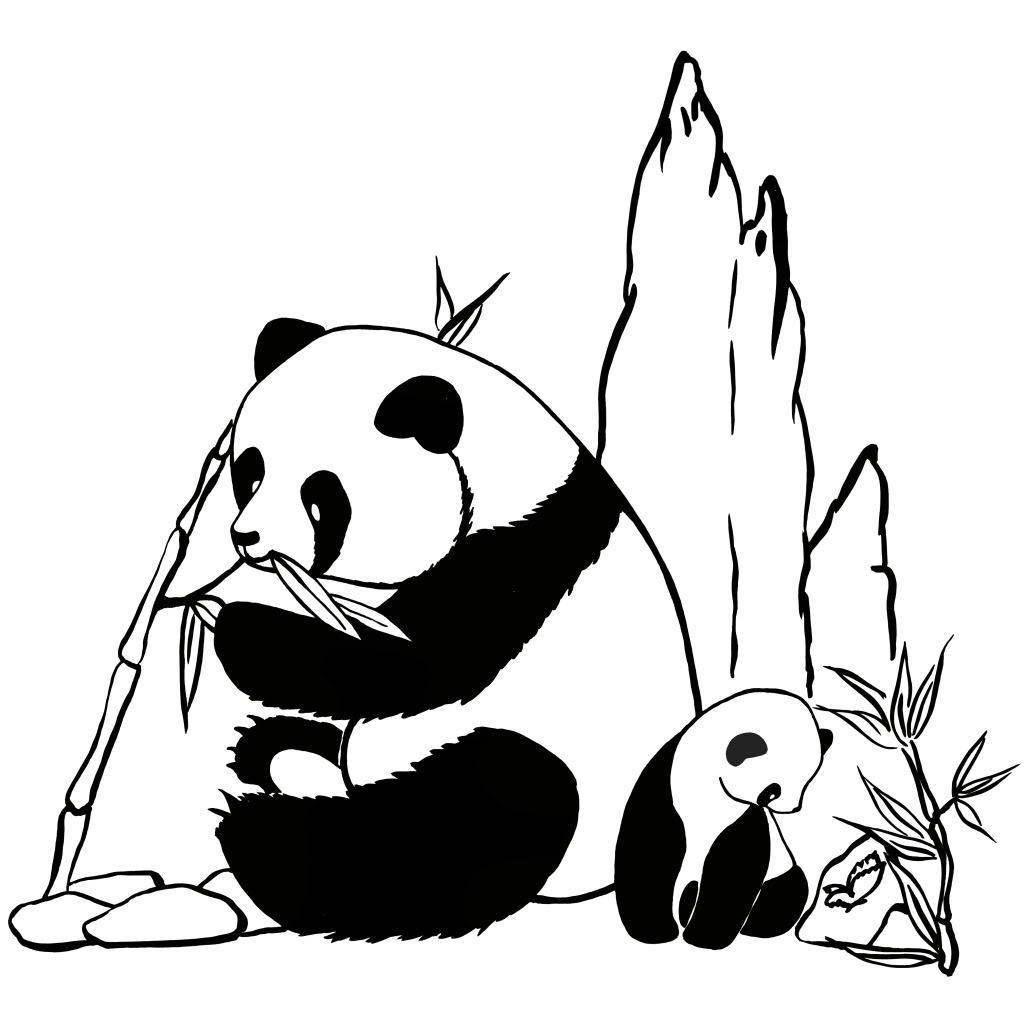 Coloriage De Panda À Imprimer tout Panda À Colorier