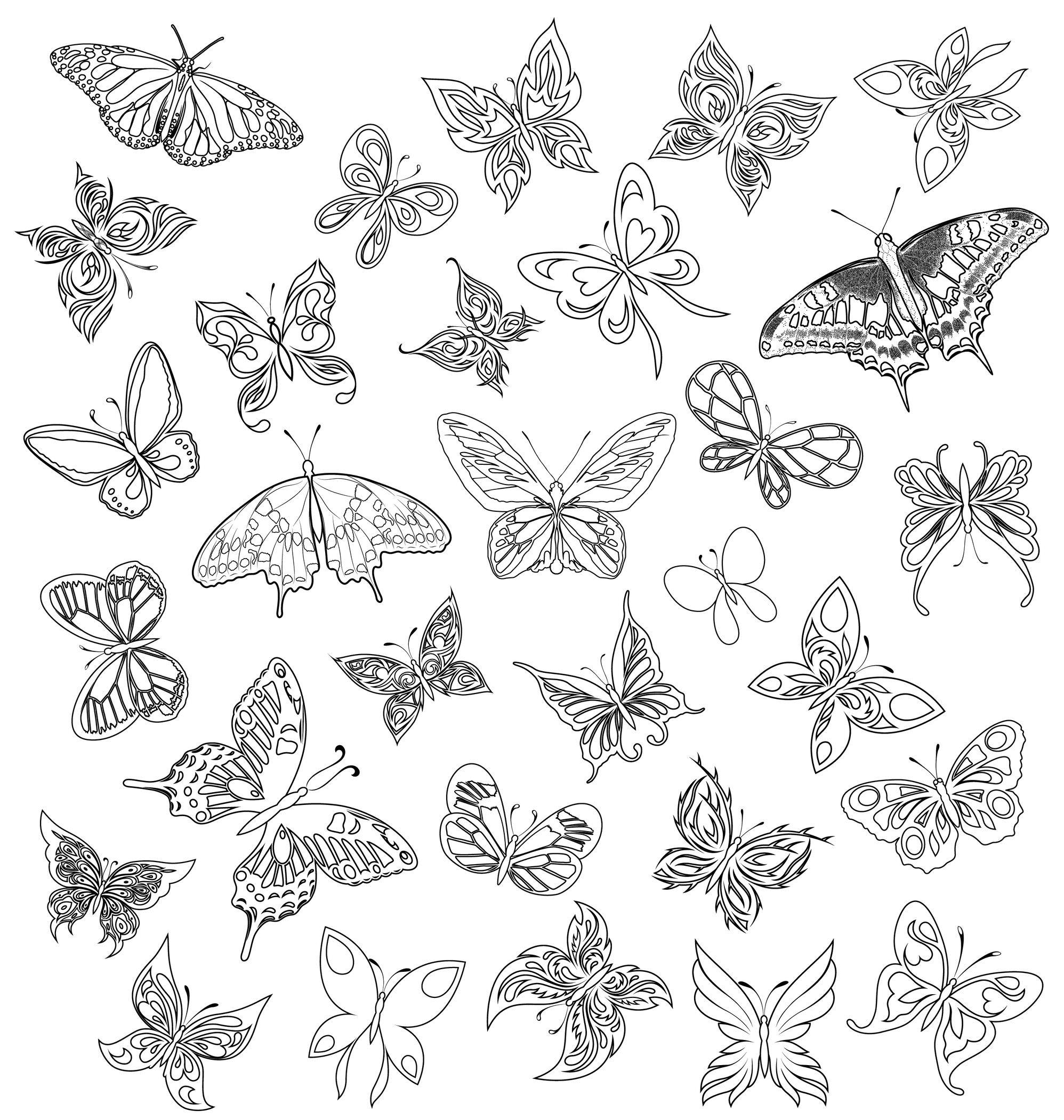 Coloriage De Papillon avec Dessin Papillon À Colorier