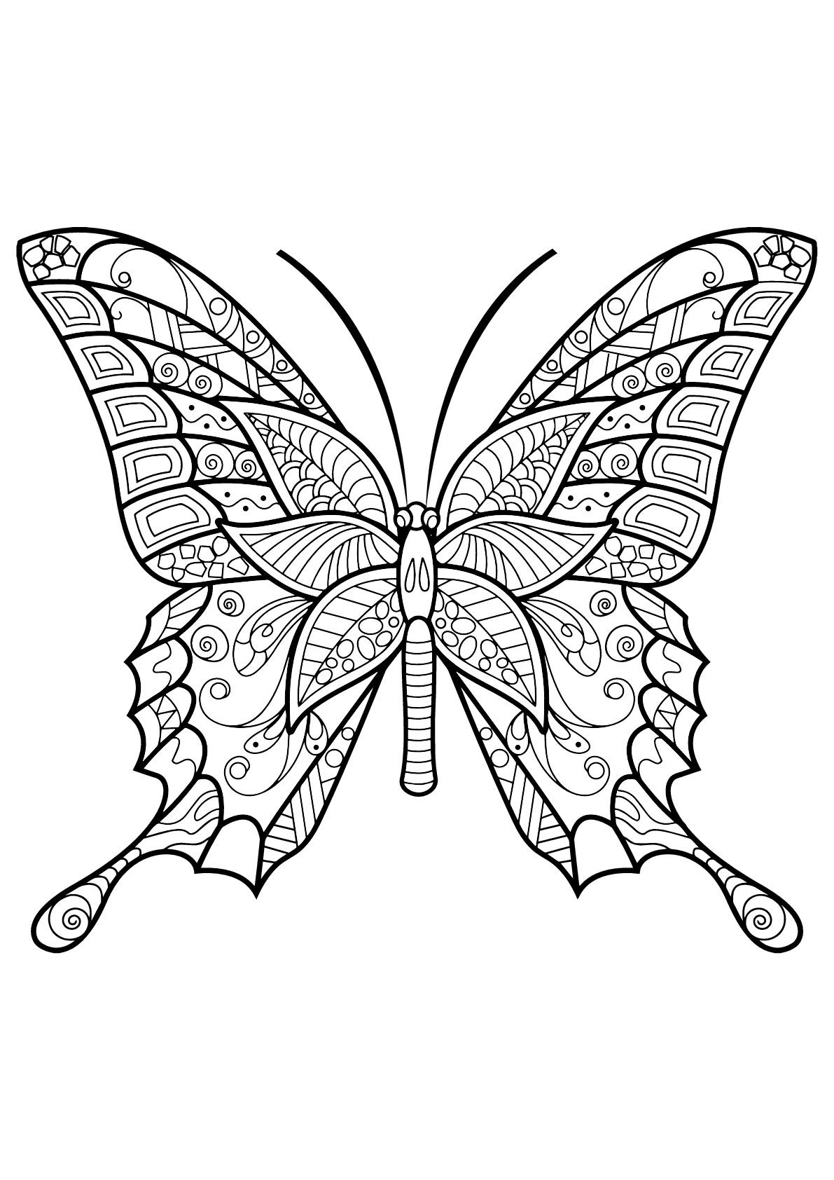 Coloriage De Papillons Gratuit À Colorier - Coloriage De avec Dessin A Imprimer Papillon Gratuit
